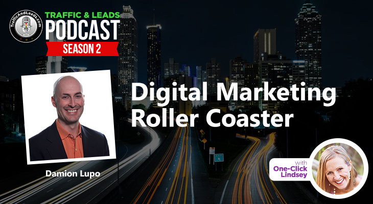 Digital Marketing Roller Coaster